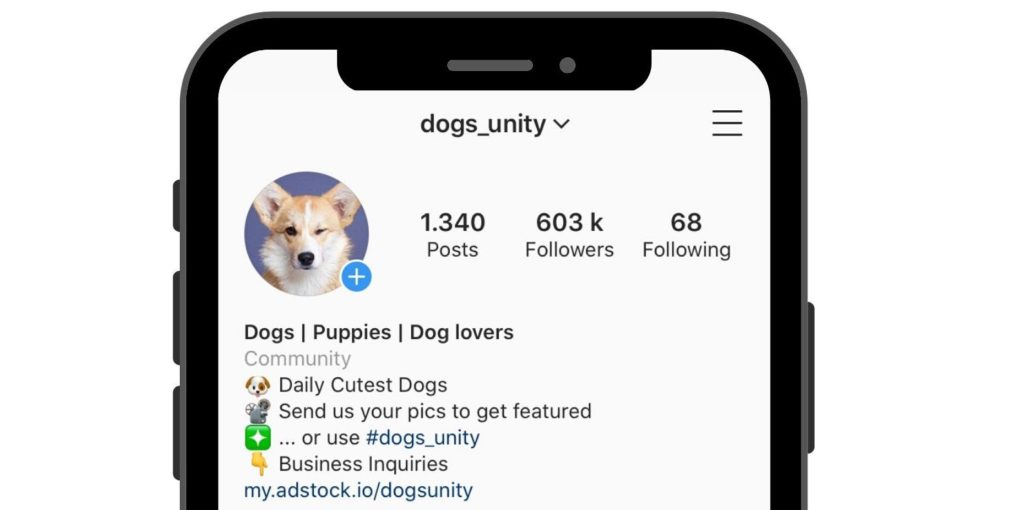 Instagram dogs_unity